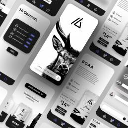 App Presentation 001 uai