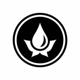 Magnus Logo 001 uai