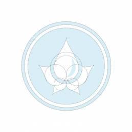 Magnus Logo Bones uai