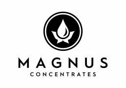 Magnus Logo scaled uai