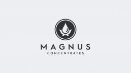 Magnus Logo uai