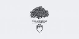 SB Logo uai