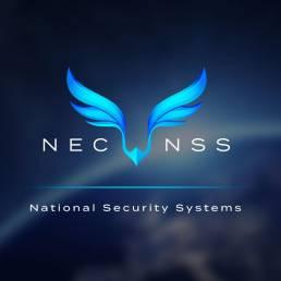 NSS 002 e1613416521642 uai