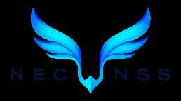 NSS Logo Color uai